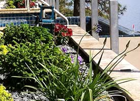 Okanagan plants for landscaping, flowers, landscaping rock